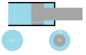 Gasdruckfeder Oberfläche